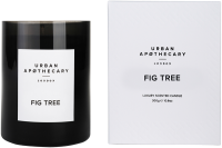 Urban Apothecary Fig Tree Luxury Scented Candle