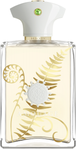 Amouage Bracken Man E.d.P. Nat. Spray